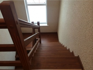 showhome_real_2213